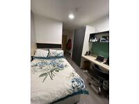 Looking for a student replacement ASAP. Ensuite Room