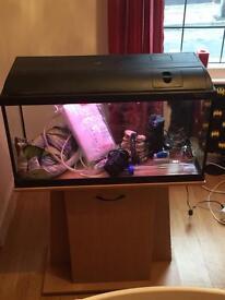 110litre fish tank