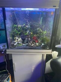 Aquarium 2ftx2ftx2ft. Empty