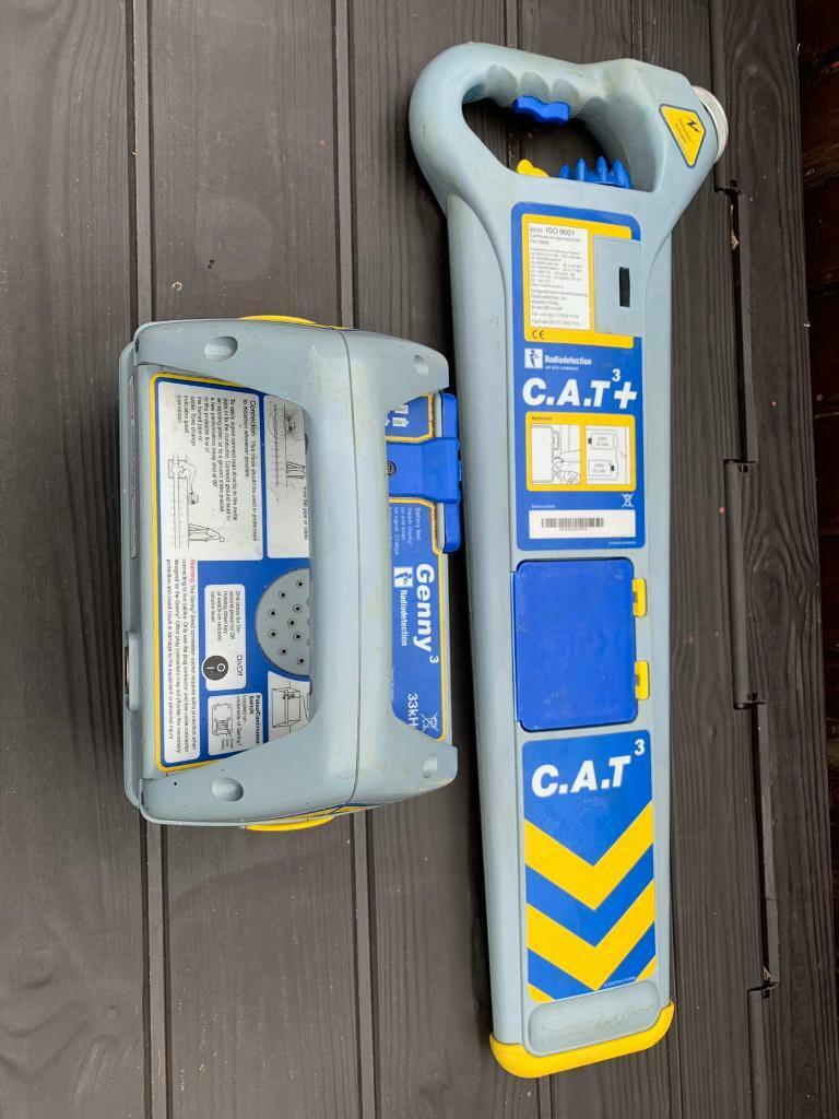 Cat 3+ and Genny   in Bletchley, Buckinghamshire   Gumtree
