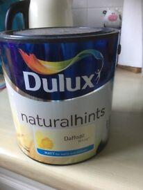Dulux Matt paint