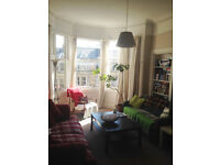 Festival let for large, sunny double room in Marchmont