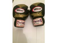 Twins Thai Boxing Gloves