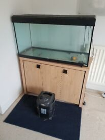 Large Fish Tank and Stand for Sale - Must Go as moving House
