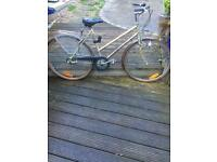 Vintage styleLadies bike