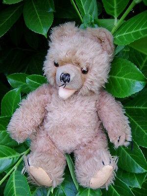 Teddy  Bär  Hermann