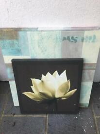 3 Canvases