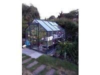 8' x 6' aluminium green greenhouse