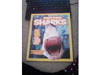 Everything Sharks