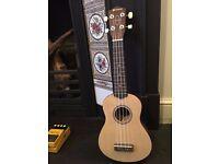 Chord beginners ukulele