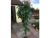 Artificial Ficus / Fig Tree 152 cm