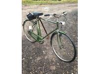 Hampton bike