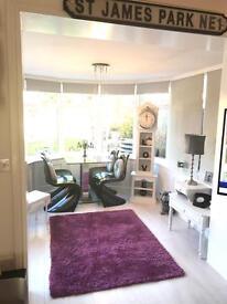 Shaggy plum Next rug perfect