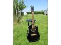 12 string acoustic guitar