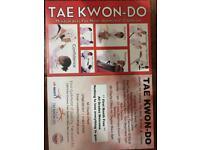 Free taekwondo lessons for 4 weeks