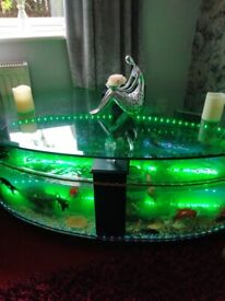 For sale coffy table tank with every think u need