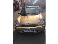 Gold Mini