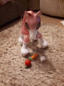Zoomer show pony.