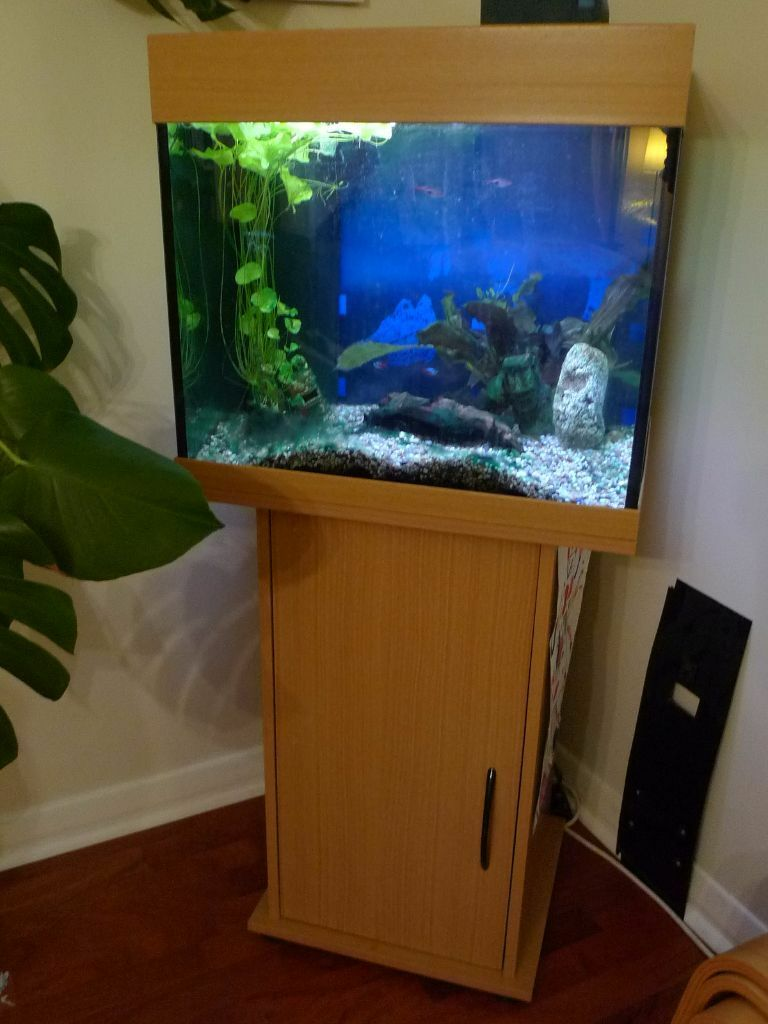 juwel lido 100l aquarium cabinet filter lights and accessories in tain highland gumtree. Black Bedroom Furniture Sets. Home Design Ideas