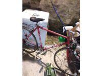 1980s racer bicycle sprick