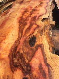 Yew timber planks waney/live edge table tops and boards woodturning DIY furniture