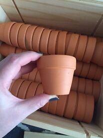 Mini terracotta plant pots x 60 - wedding favour ideas