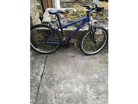 Revolution Cuillin Mountain Bikes