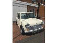 Lovely little mini for sale!