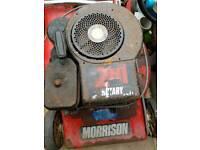 Briggs and Stratton lawnmower engine
