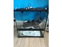 Glass exo terra tank for sale! £60