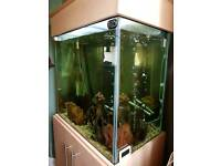 265 litre fish tank new external filter and heater