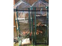 Two small - greenhouse