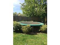 TP trampoline