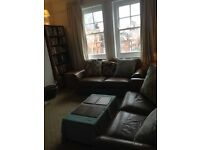 Marylebone. Large room for single professional person. All bills inc. weekly cleaner. Avail. 17 Aug
