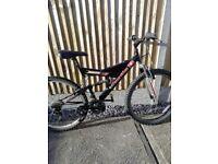 Unisex adult mountain bike