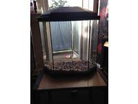 30 ltr fish tank