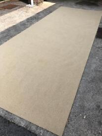 Carpet (brand new)