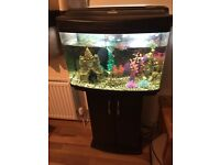Fishpod fish tank and stand for sale 64 litres