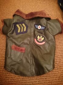 Doggie flight jacket great and small