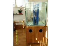 AquaOak Aquarium with sump tank