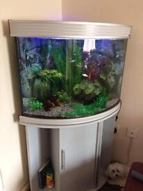 Aquarium SOLD