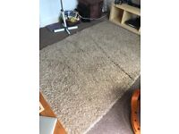 Large Next rug