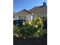 Lodger required in Portslade bungalow