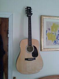 Hanks acoustic 55.00