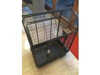 Parrot bird large cage