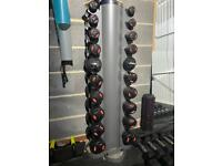 Bodymax 1-10kgs dumbbell set full pairs with rack