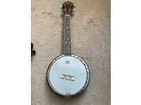 Barnes and Mullins Banjolele