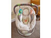 Ingenuity Infant Bouncer