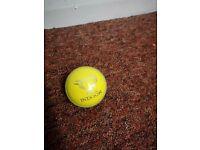 Cricket Ball Indoor