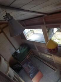 8x8 pigeon shed/loft for sale